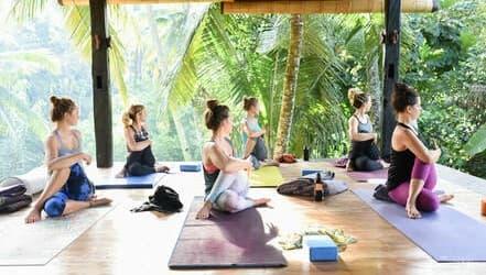 meditacion en accion yoga iyengar
